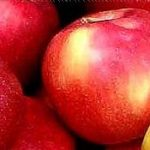 Recetas sanas,Compota de manzana