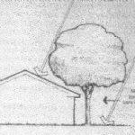 arquitectura Bioclimática, Temperatura y Vegetación (2)